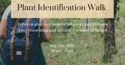 Plant Identification Walk in the Shenandoah Valley