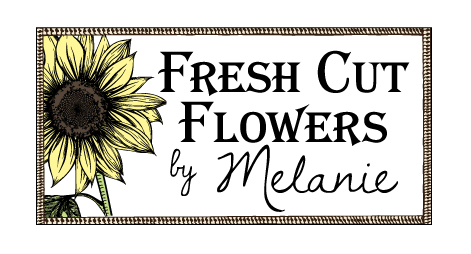 Fresh Cut Flowers by Melanie